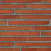 2210 Red Multi Slop Moulded Roman Brick